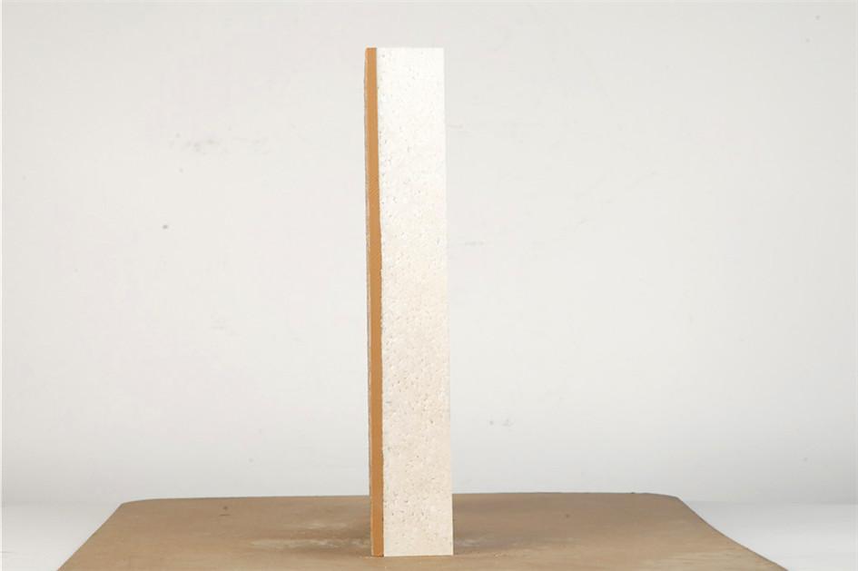 多彩漆模塑聚苯板保温装饰一体化板 (3)